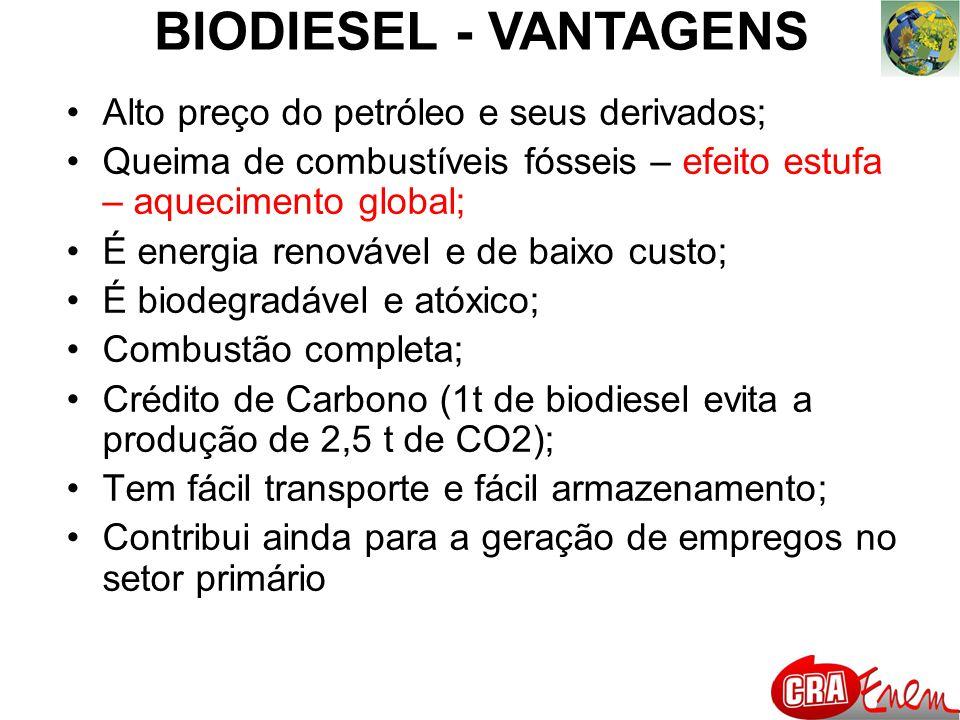 BIODIESEL - VANTAGENS Alto preço do petróleo e seus derivados; Queima de combustíveis fósseis – efeito estufa – aquecimento global; É energia renovável e de baixo custo; É biodegradável e atóxico; Combustão completa; Crédito de Carbono (1t de biodiesel evita a produção de 2,5 t de CO2); Tem fácil transporte e fácil armazenamento; Contribui ainda para a geração de empregos no setor primário