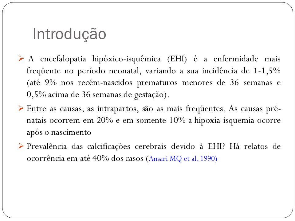 Introdução A encefalopatia hipóxico-isquêmica (EHI) é a enfermidade mais freqüente no período neonatal, variando a sua incidência de 1-1,5% (até 9% no