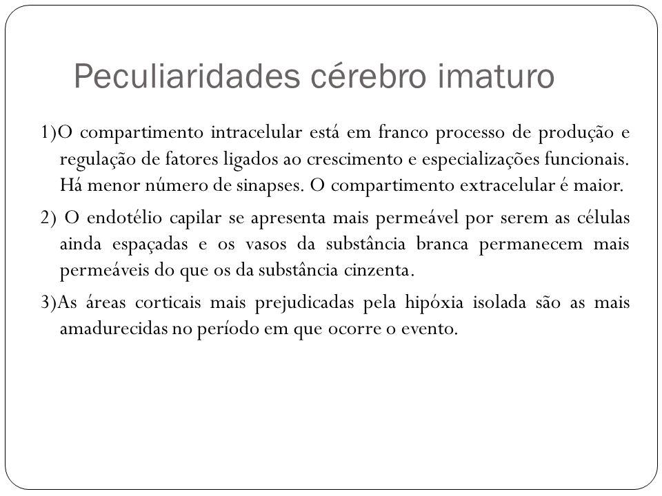Peculiaridades cérebro imaturo 1)O compartimento intracelular está em franco processo de produção e regulação de fatores ligados ao crescimento e espe