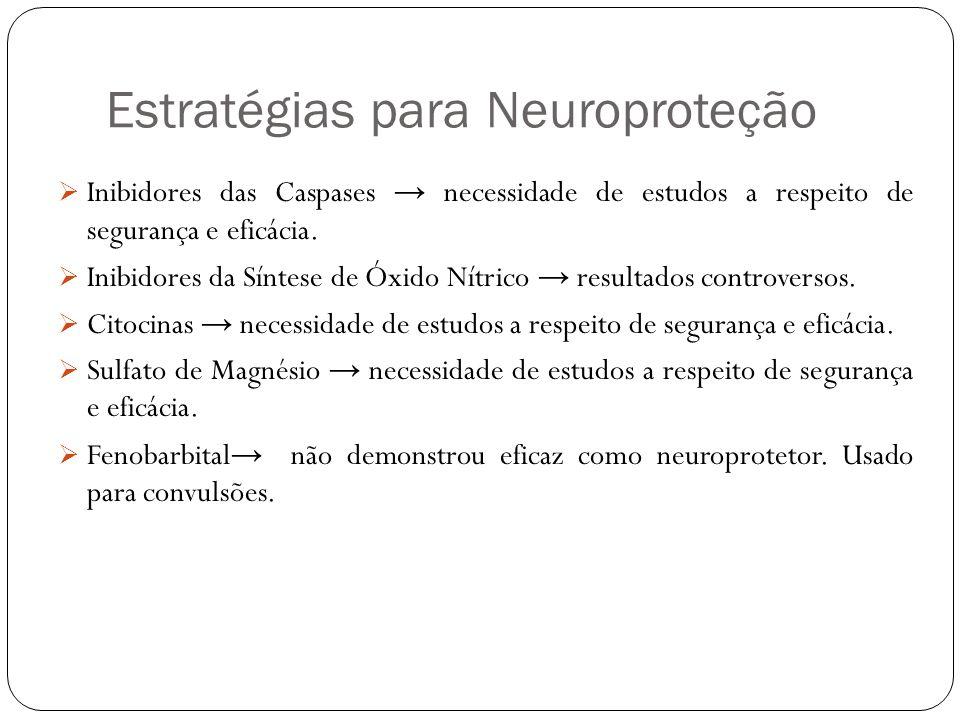 Estratégias para Neuroproteção Inibidores das Caspases necessidade de estudos a respeito de segurança e eficácia. Inibidores da Síntese de Óxido Nítri