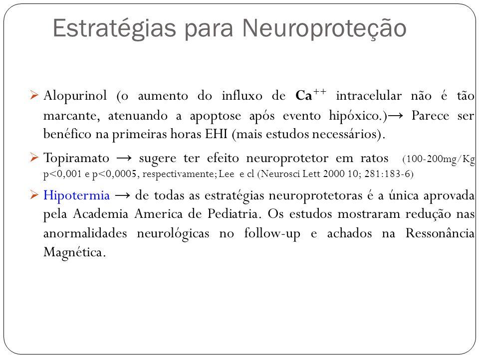 Estratégias para Neuroproteção Alopurinol (o aumento do influxo de Ca ++ intracelular não é tão marcante, atenuando a apoptose após evento hipóxico.)