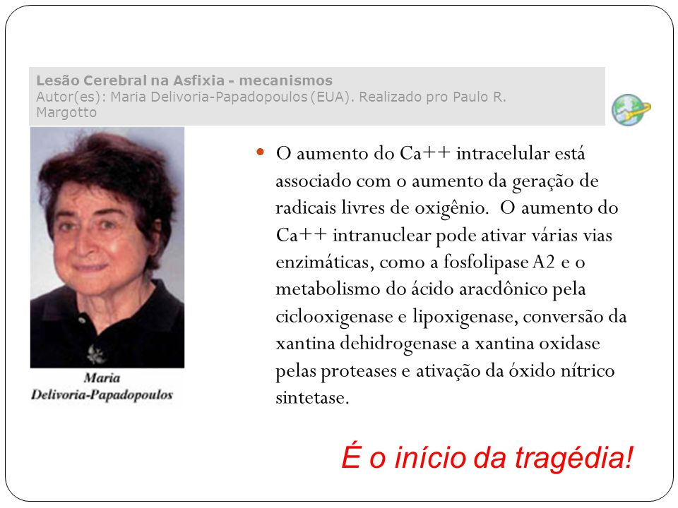 Lesão Cerebral na Asfixia - mecanismos Autor(es): Maria Delivoria-Papadopoulos (EUA). Realizado pro Paulo R. Margotto O aumento do Ca++ intracelular e