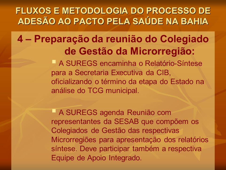 4 – Preparação da reunião do Colegiado de Gestão da Microrregião: A SUREGS encaminha o Relatório-Síntese para a Secretaria Executiva da CIB, oficializando o término da etapa do Estado na análise do TCG municipal.