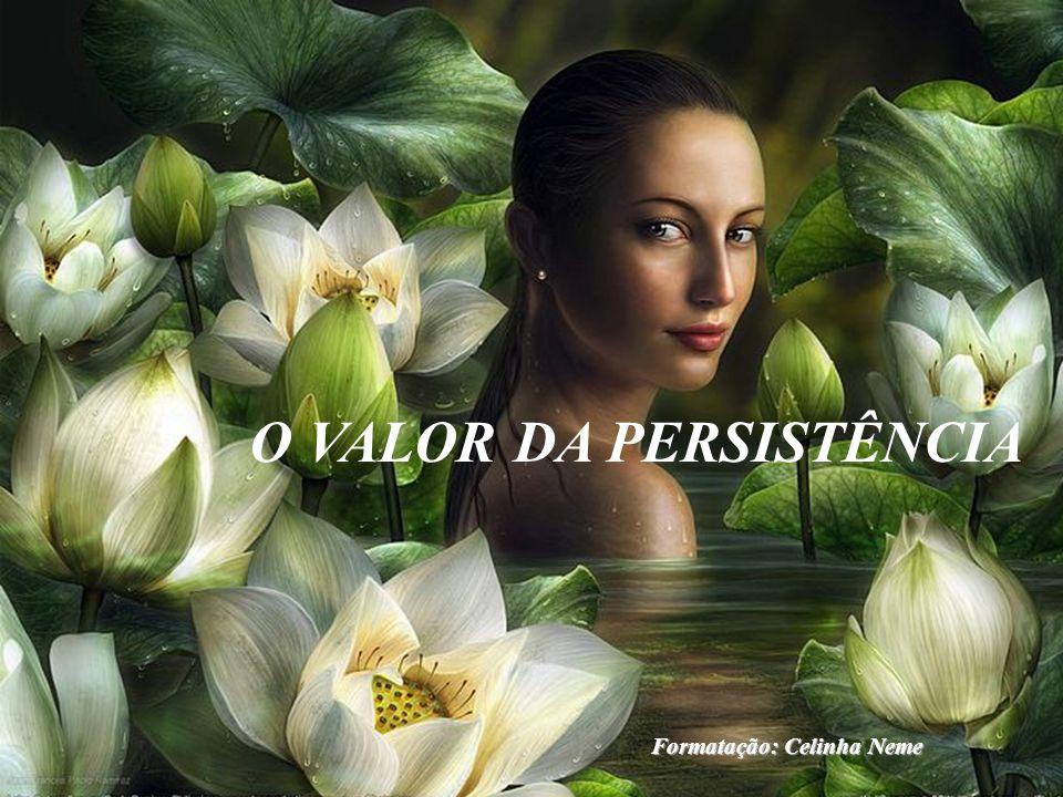 O VALOR DA PERSISTÊNCIA Formatação: Celinha Neme
