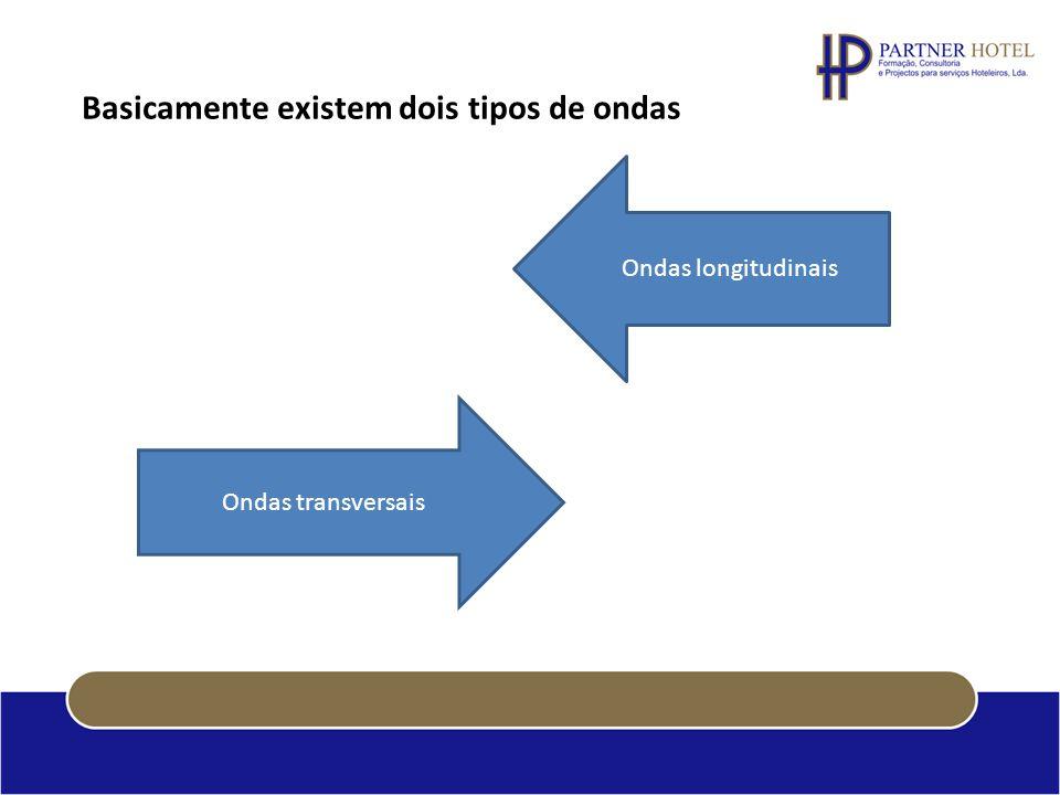 Basicamente existem dois tipos de ondas Ondas transversais Ondas longitudinais