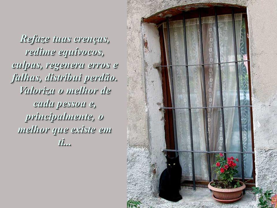 Espalha poeira dourada de sonhos além da janela, planta flores e colhe encantamento. Permite que as sementes da felicidade se espalhem e contaminem to