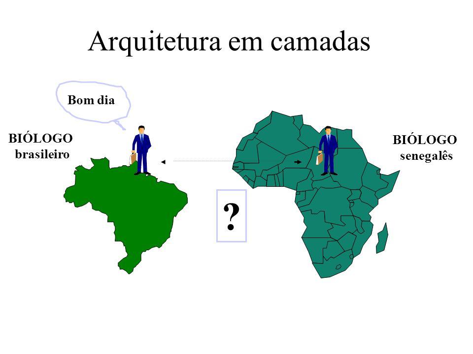 Arquitetura em camadas BIÓLOGO brasileiro BIÓLOGO senegalês ? Bom dia