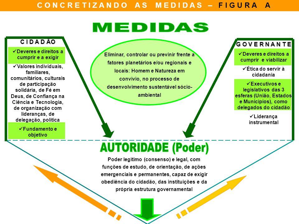 C O N C R E T I Z A N D O A S M E D I D A S – F I G U R A A Poder legítimo (consenso) e legal, com funções de estudo, de orientação, de ações emergenc
