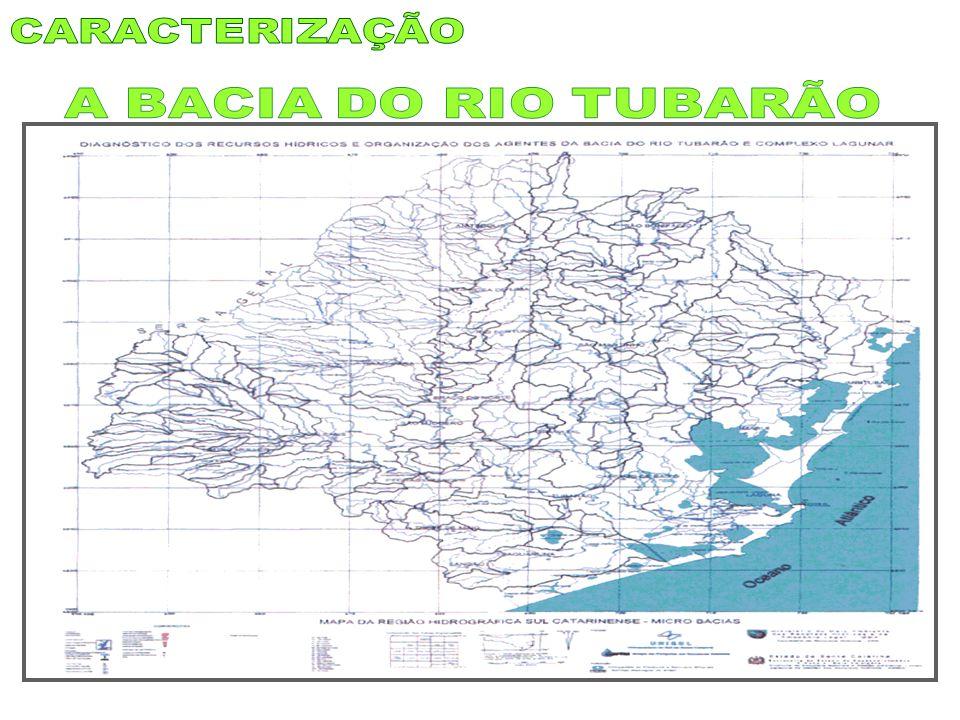 Há inúmeros depoimentos escritos sobre a catástrofe de 1974: do Governo Colombo Machado Salles de SC (1974), da Fessc – Unisul (1976), de Albeirice (1974), de Feuerschuette (2004), de Elfos Seculares (2002), de Vittorette (1992), de Machado (2005) e outros.