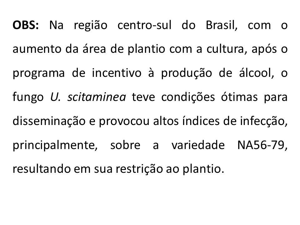 OBS: Na região centro-sul do Brasil, com o aumento da área de plantio com a cultura, após o programa de incentivo à produção de álcool, o fungo U. sci