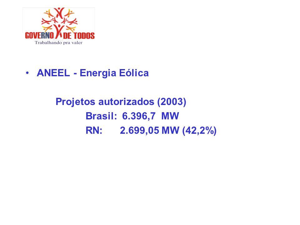ANEEL - Energia Eólica Projetos autorizados (2003) Brasil: 6.396,7 MW RN: 2.699,05 MW (42,2%)