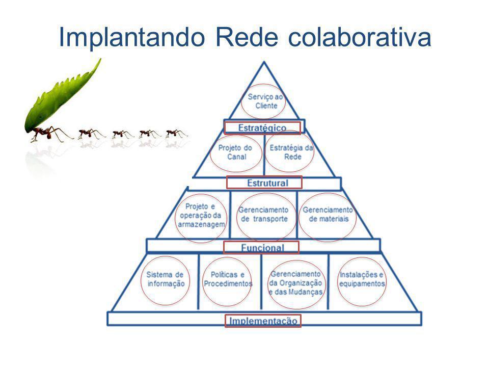 Implantando Rede colaborativa