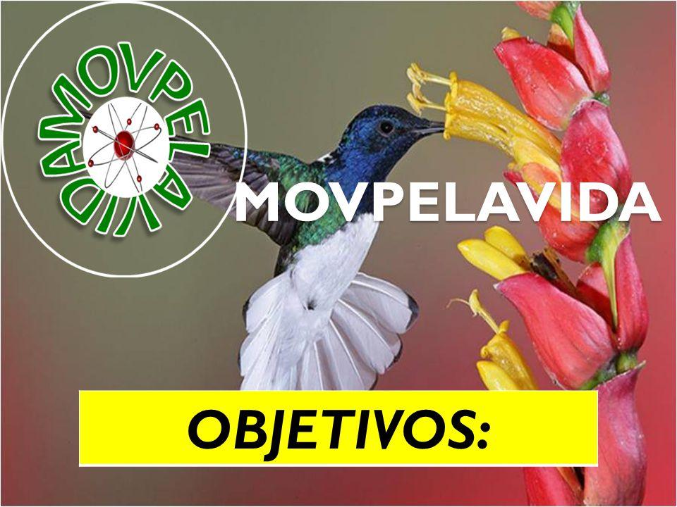 MOVPELAVIDA Surgiu do consenso e união de um grupo de alunos dos cursos patrocinados pela SENAD, ao identificar dentro destes cursos, uma corrente de cursistas com proposta de Legalização das Drogas no Brasil, como solução.