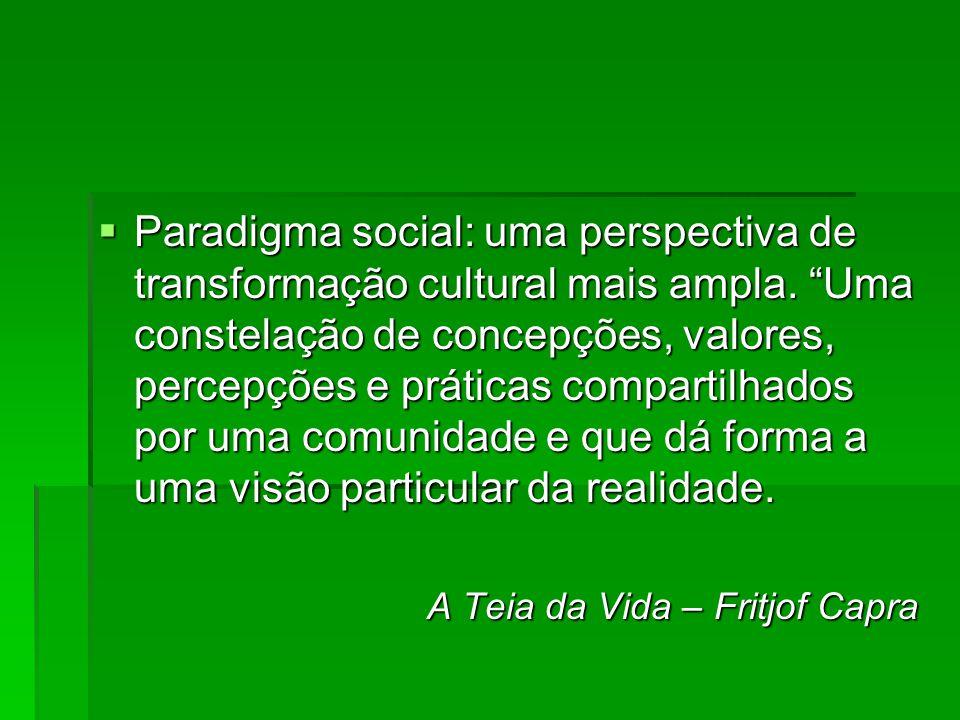 Paradigma social: uma perspectiva de transformação cultural mais ampla. Uma constelação de concepções, valores, percepções e práticas compartilhados p