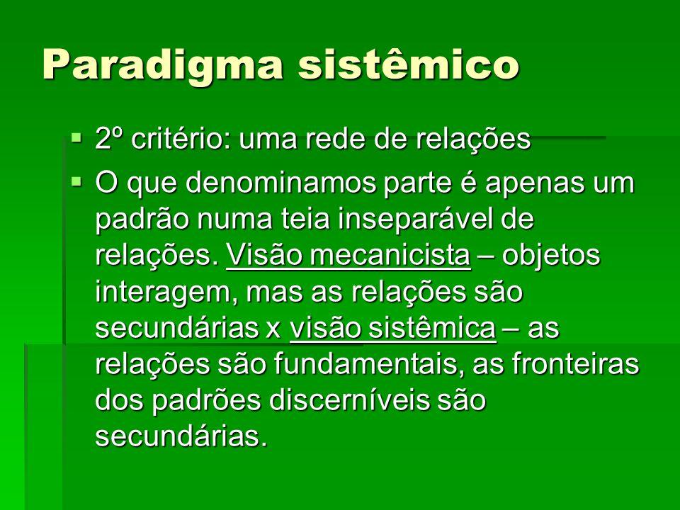 Paradigma sistêmico 2º critério: uma rede de relações 2º critério: uma rede de relações O que denominamos parte é apenas um padrão numa teia inseparáv