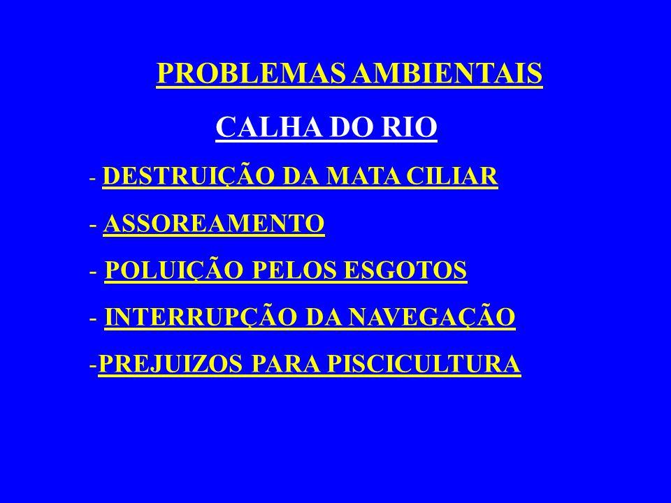 PROBLEMAS AMBIENTAIS CALHA DO RIO - DESTRUIÇÃO DA MATA CILIAR - ASSOREAMENTO - POLUIÇÃO PELOS ESGOTOS - INTERRUPÇÃO DA NAVEGAÇÃO -PREJUIZOS PARA PISCI