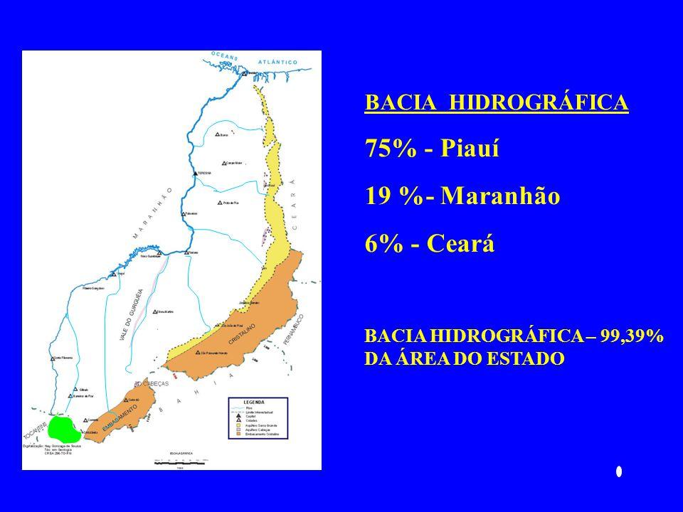 BACIA HIDROGRÁFICA 75% - Piauí 19 %- Maranhão 6% - Ceará BACIA HIDROGRÁFICA – 99,39% DA ÁREA DO ESTADO