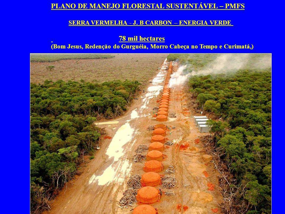PLANO DE MANEJO FLORESTAL SUSTENTÁVEL – PMFS SERRA VERMELHA - J. B CARBON – ENERGIA VERDE 78 mil hectares (Bom Jesus, Redenção do Gurguéia, Morro Cabe