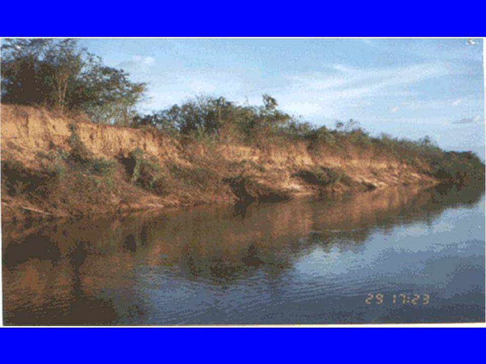 USO MÚLTIPLO DA ÁGUA Já estava estabalecido no Código das Águas(1934) que o barramento projetado para aproveitamento da energia hidráulica deveria satisfazer também as exigências: Navegação, irrigação, conservação e livre circulação de peixes, perenização do rio, proteção contra inundações.