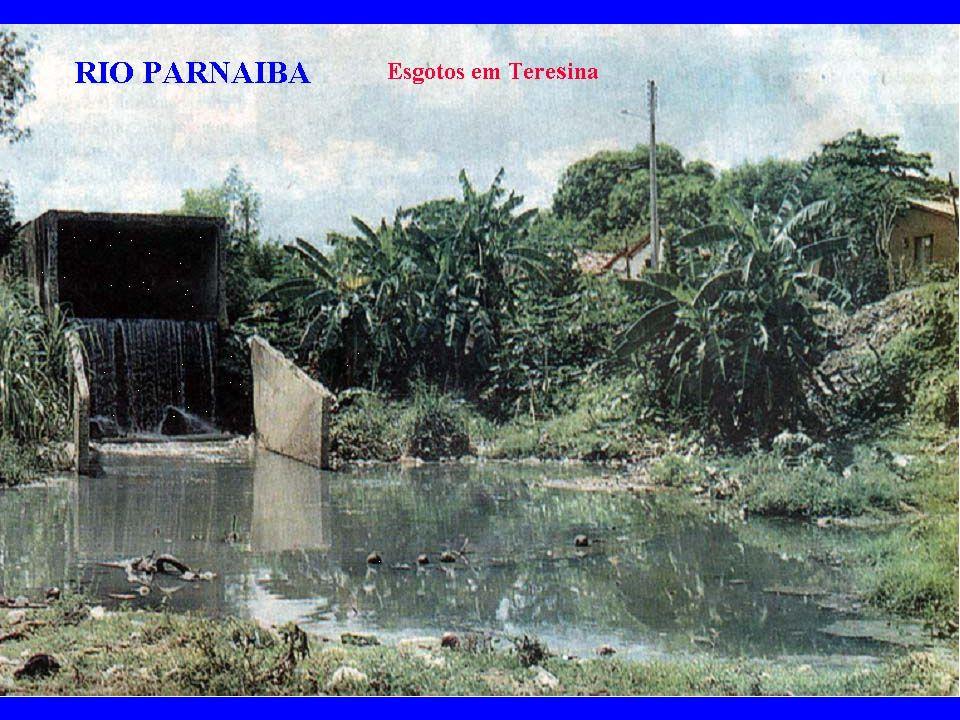 SELEÇÕES/ NOVEMBRO 2007