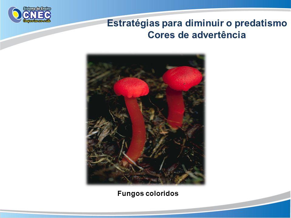 Estratégias para diminuir o predatismo Cores de advertência Fungos coloridos