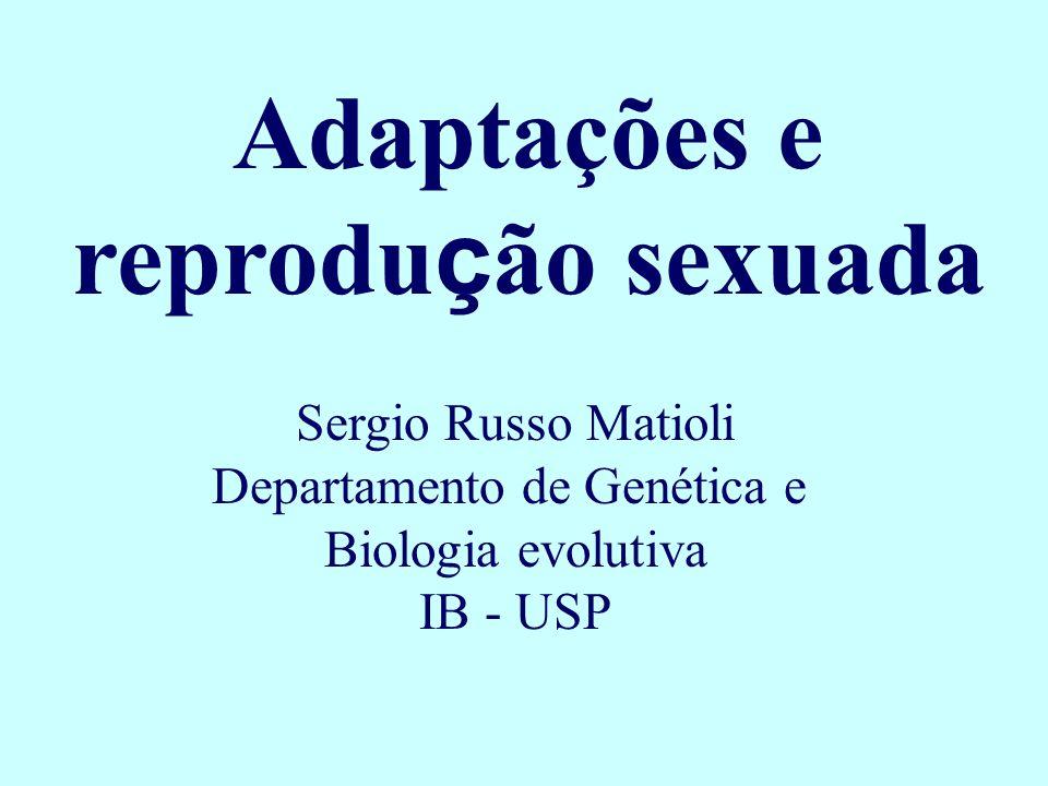 Adaptações e reprodu ç ão sexuada Sergio Russo Matioli Departamento de Genética e Biologia evolutiva IB - USP