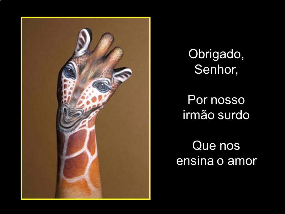 adao-las@ig.com.br Muita expressão facial E umas aulas com o Prof. Nelsão.
