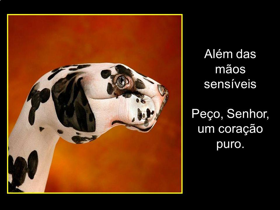 adao-las@ig.com.br Onde os surdos nos ensinam Todo dia, a todo o momento, A viver e expressar uma nova realidade.