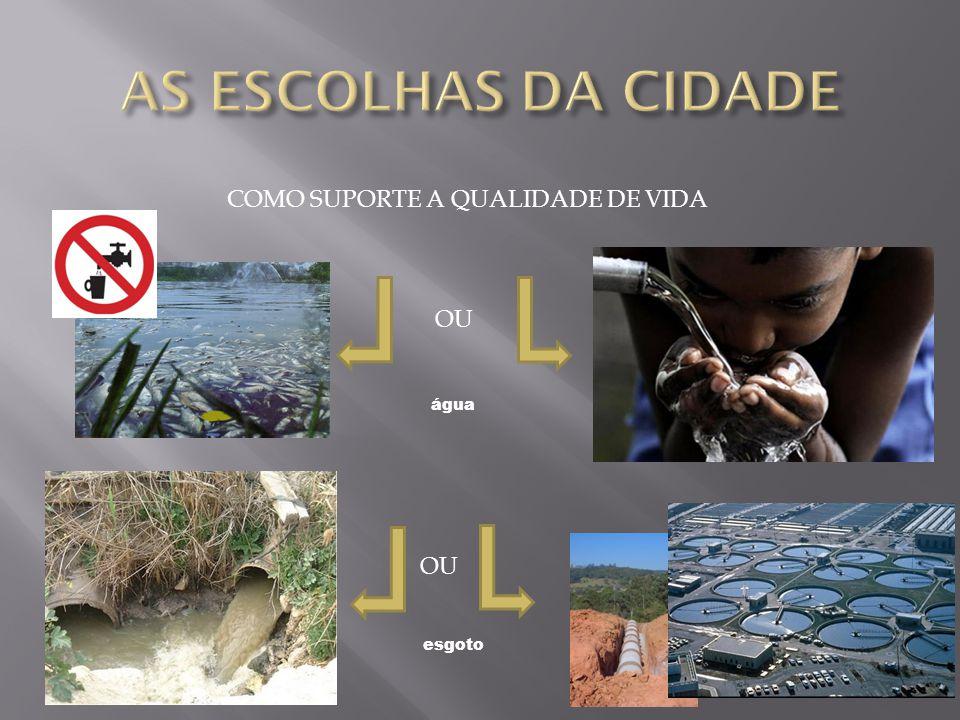 COMO SUPORTE A QUALIDADE DE VIDA OU água esgoto