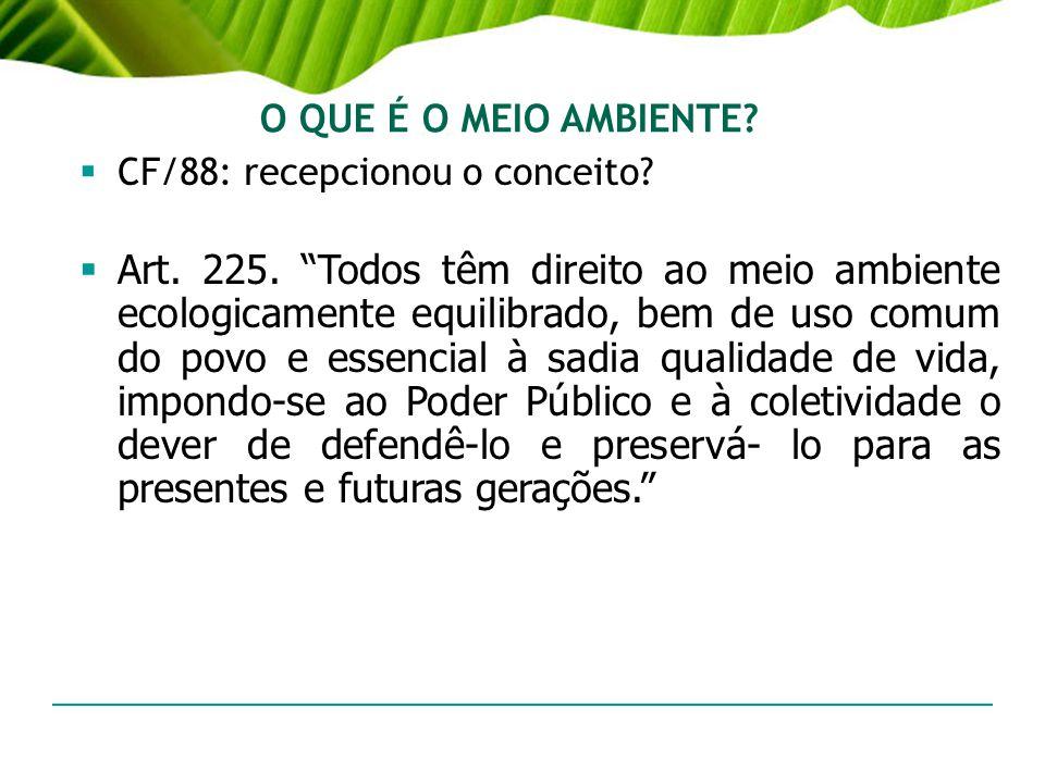 O QUE É O MEIO AMBIENTE? CF/88: recepcionou o conceito? Art. 225. Todos têm direito ao meio ambiente ecologicamente equilibrado, bem de uso comum do p