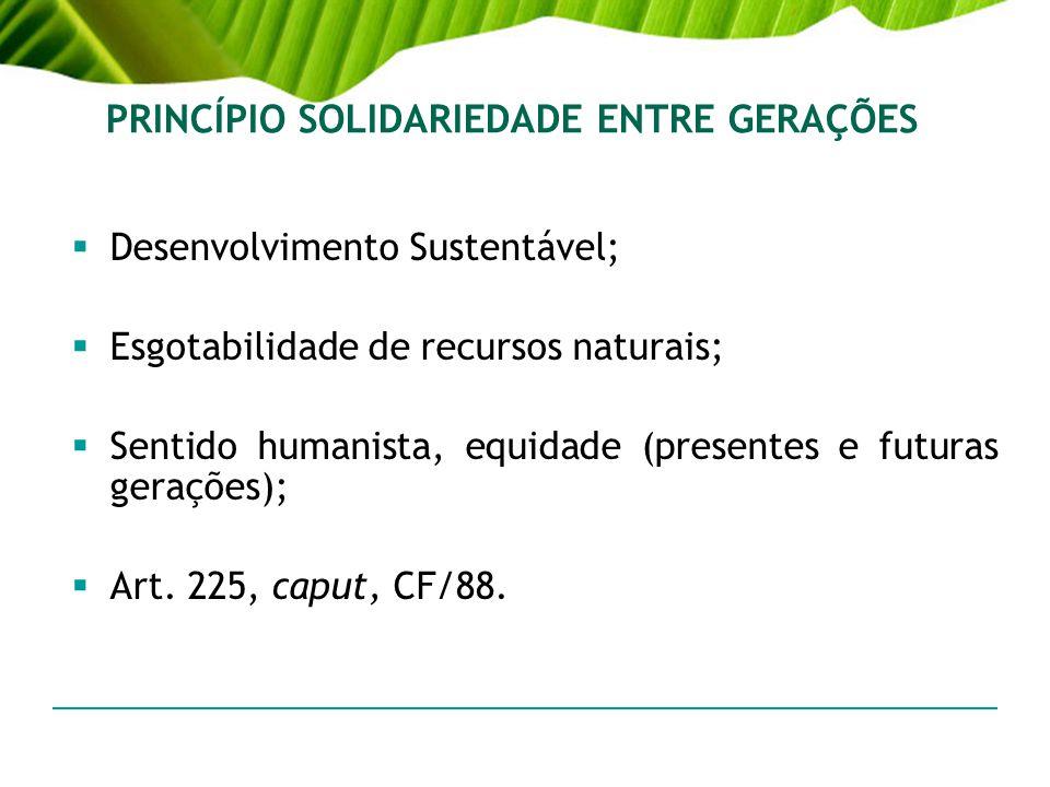 PRINCÍPIO SOLIDARIEDADE ENTRE GERAÇÕES Desenvolvimento Sustentável; Esgotabilidade de recursos naturais; Sentido humanista, equidade (presentes e futu