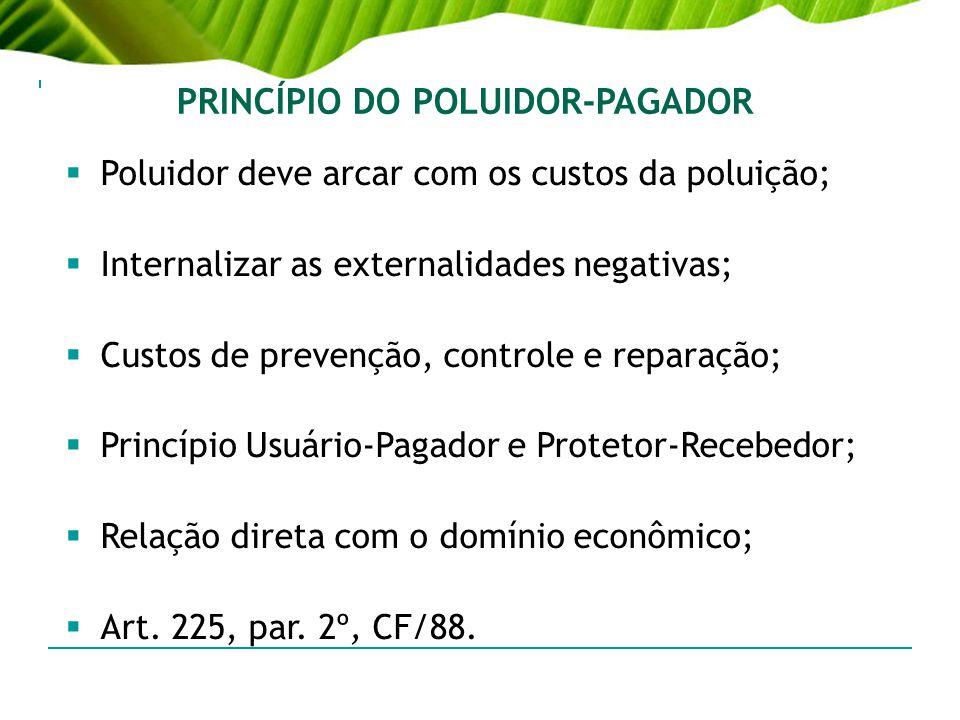 PRINCÍPIO DO POLUIDOR-PAGADOR Poluidor deve arcar com os custos da poluição; Internalizar as externalidades negativas; Custos de prevenção, controle e