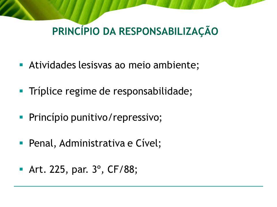 PRINCÍPIO DA RESPONSABILIZAÇÃO Atividades lesisvas ao meio ambiente; Tríplice regime de responsabilidade; Princípio punitivo/repressivo; Penal, Admini