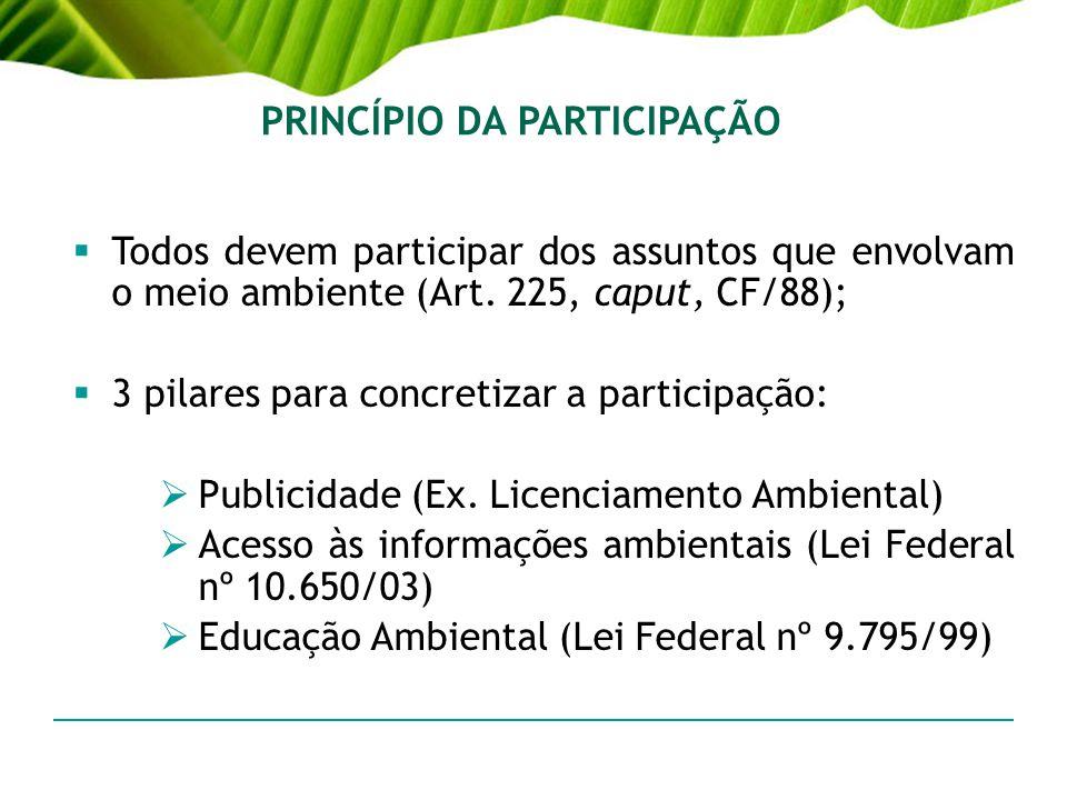 PRINCÍPIO DA PARTICIPAÇÃO Todos devem participar dos assuntos que envolvam o meio ambiente (Art. 225, caput, CF/88); 3 pilares para concretizar a part