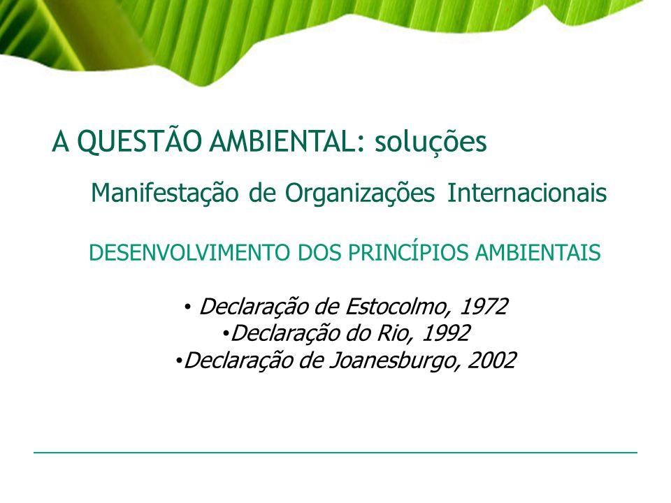 A QUESTÃO AMBIENTAL: soluções Manifestação de Organizações Internacionais DESENVOLVIMENTO DOS PRINCÍPIOS AMBIENTAIS Declaração de Estocolmo, 1972 Decl