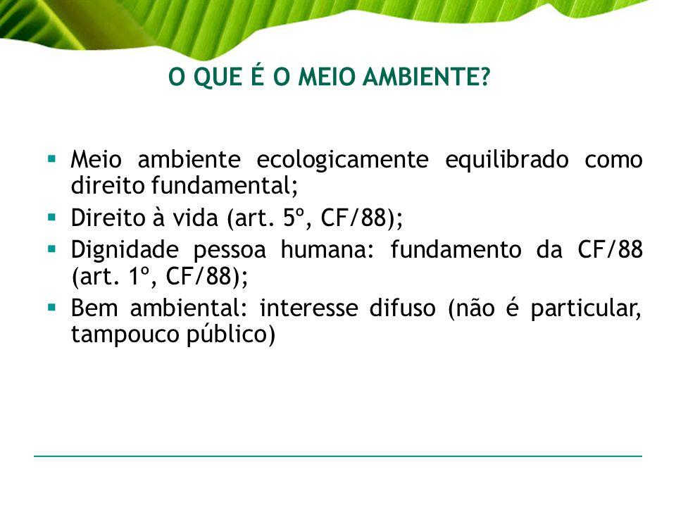 O QUE É O MEIO AMBIENTE? Meio ambiente ecologicamente equilibrado como direito fundamental; Direito à vida (art. 5º, CF/88); Dignidade pessoa humana: