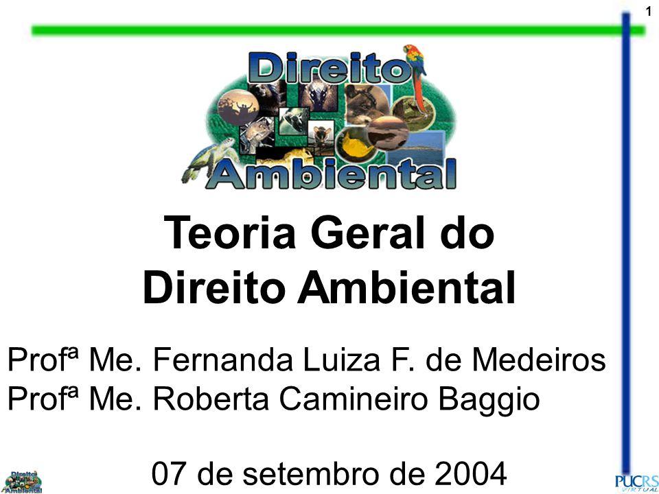 1 Teoria Geral do Direito Ambiental Profª Me. Fernanda Luiza F. de Medeiros Profª Me. Roberta Camineiro Baggio 07 de setembro de 2004