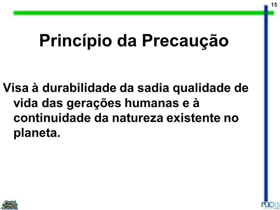 15 Princípio da Precaução Visa à durabilidade da sadia qualidade de vida das gerações humanas e à continuidade da natureza existente no planeta.
