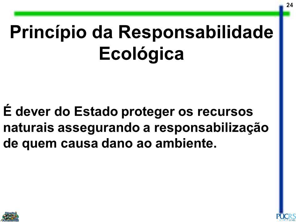 24 Princípio da Responsabilidade Ecológica É dever do Estado proteger os recursos naturais assegurando a responsabilização de quem causa dano ao ambie