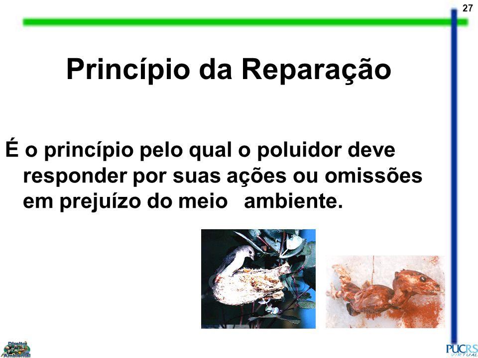 27 Princípio da Reparação É o princípio pelo qual o poluidor deve responder por suas ações ou omissões em prejuízo do meio ambiente.