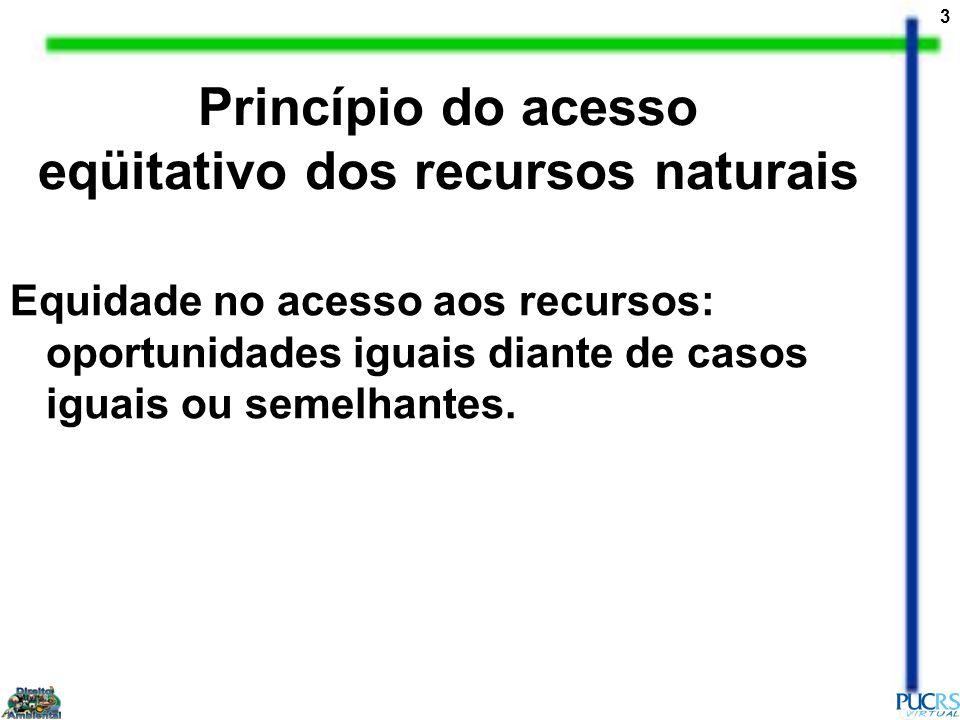 3 Equidade no acesso aos recursos: oportunidades iguais diante de casos iguais ou semelhantes. Princípio do acesso eqüitativo dos recursos naturais