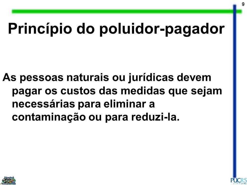 9 As pessoas naturais ou jurídicas devem pagar os custos das medidas que sejam necessárias para eliminar a contaminação ou para reduzi-la. Princípio d