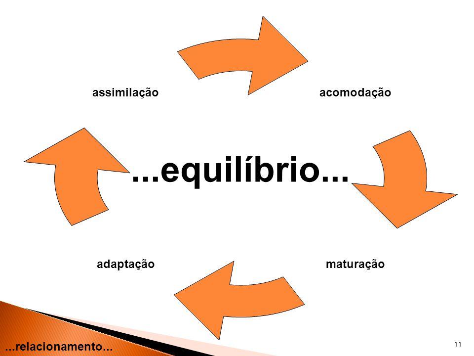 11...relacionamento... acomodação maturaçãoadaptação assimilação...equilíbrio...