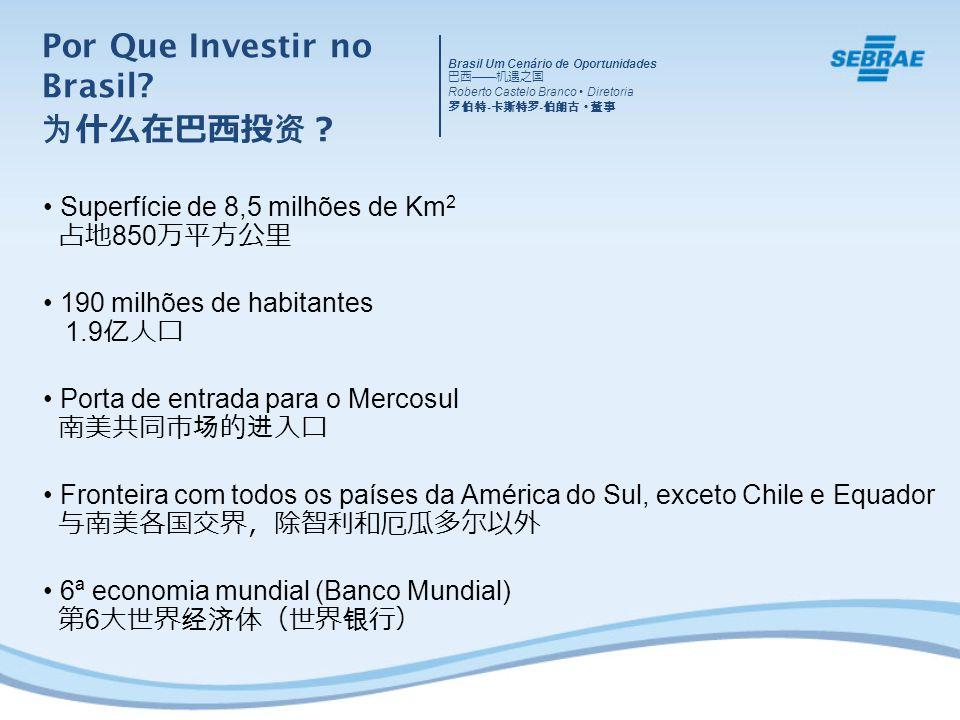 Superfície de 8,5 milhões de Km 2 850 190 milhões de habitantes 1.9 Porta de entrada para o Mercosul Fronteira com todos os países da América do Sul,