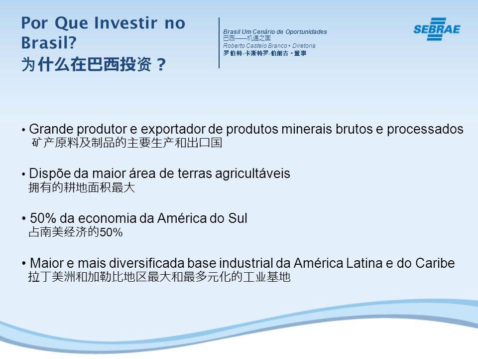 Grande produtor e exportador de produtos minerais brutos e processados Dispõe da maior área de terras agricultáveis 50% da economia da América do Sul