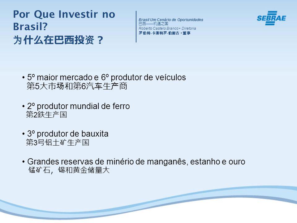 5º maior mercado e 6º produtor de veículos 5 6 2º produtor mundial de ferro 2 3º produtor de bauxita 3 Grandes reservas de minério de manganês, estanho e ouro Brasil Um Cenário de Oportunidades Roberto Castelo Branco Diretoria - - Por Que Investir no Brasil?