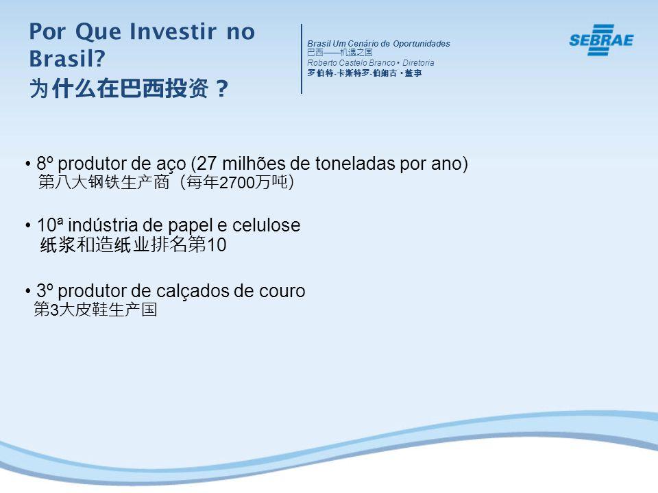 Brasil Um Cenário de Oportunidades Roberto Castelo Branco Diretoria - - 8º produtor de aço (27 milhões de toneladas por ano) 2700 10ª indústria de papel e celulose 10 3º produtor de calçados de couro 3 Por Que Investir no Brasil?