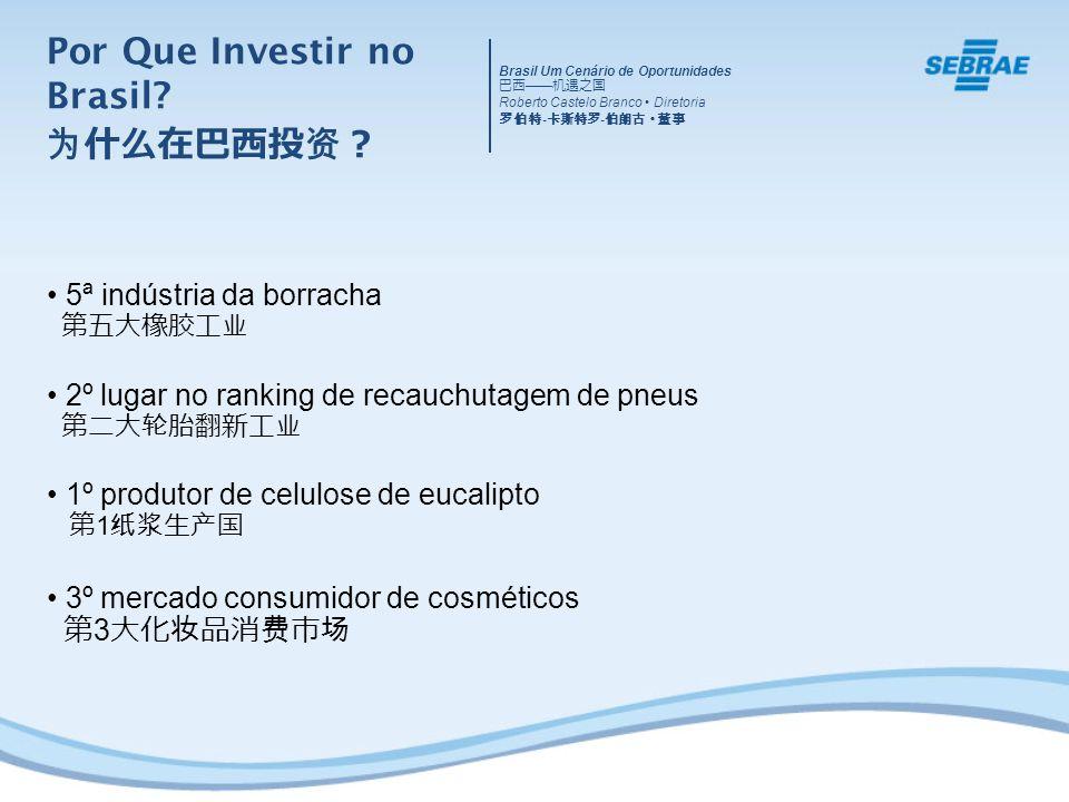 5ª indústria da borracha 2º lugar no ranking de recauchutagem de pneus 1º produtor de celulose de eucalipto 1 3º mercado consumidor de cosméticos 3 Brasil Um Cenário de Oportunidades Roberto Castelo Branco Diretoria - - Por Que Investir no Brasil?