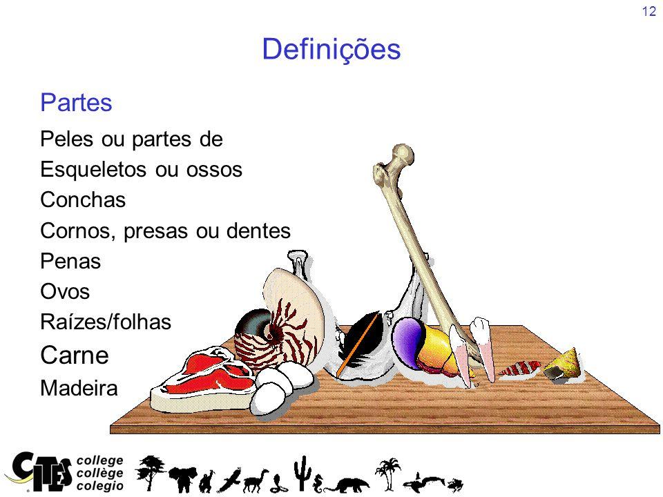 12 Peles ou partes de Esqueletos ou ossos Conchas Cornos, presas ou dentes Penas Ovos Raízes/folhas Carne Madeira Definições Partes