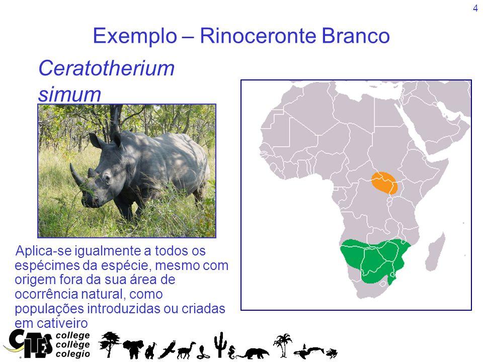 4 Exemplo – Rinoceronte Branco Species Aplica-se igualmente a todos os espécimes da espécie, mesmo com origem fora da sua área de ocorrência natural,